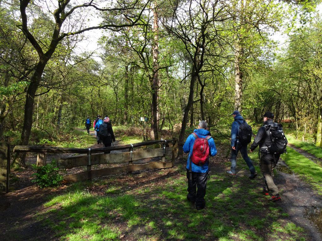 Cursisten lopen door een bos in Vasse Twente met rugzakken op onder begeleiding van een gids.