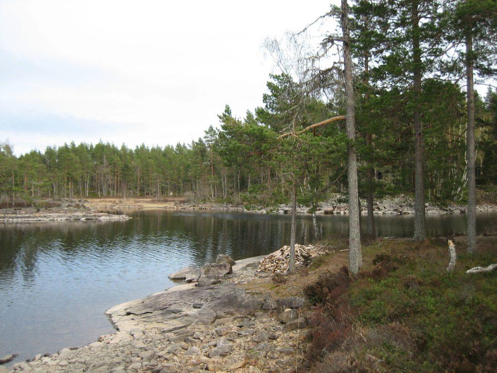 Foto van een Scandinavisch landschap met een door dennenbomen omringd meer met een oever van rotsen met en blauw bewolkte lucht.