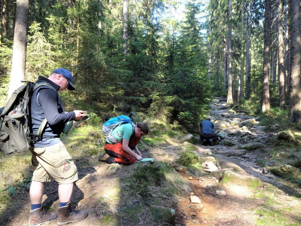 Drie cursisten van Northern Pioneers staan en zitten op hun knieën bezig met kaart kompas en gps om hun route door de groene dennenbossen te bepalen.