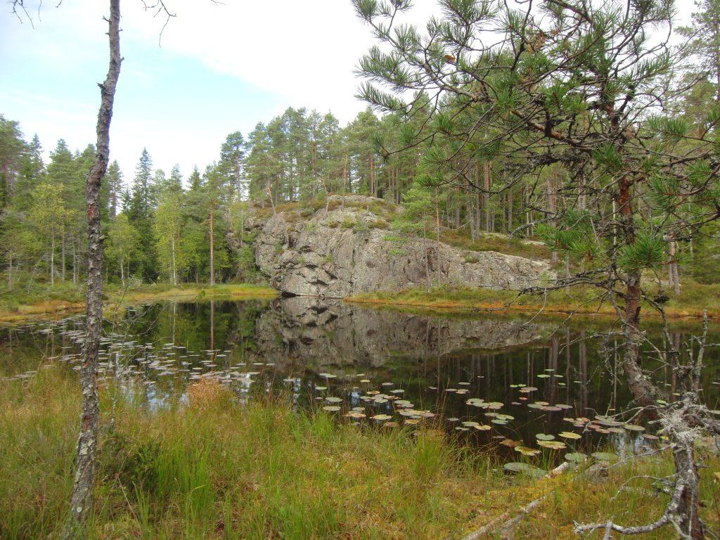 Vennetje met aan de overkant een groot groen begroeide rots.