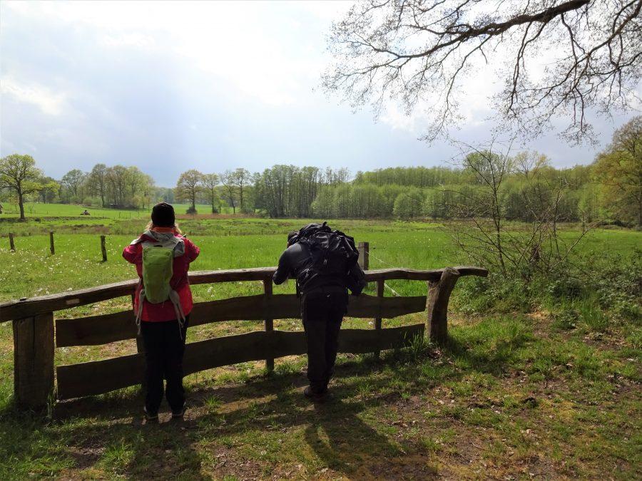 Twee cursisten staan met rugzak op bij een houten hek en kijken uit over het Twentse landschap.
