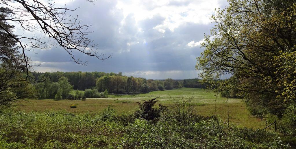 Uitzicht over het groene heuvelachtige landschap in Vasse Twente waarbij de zon door de wolken straalt.