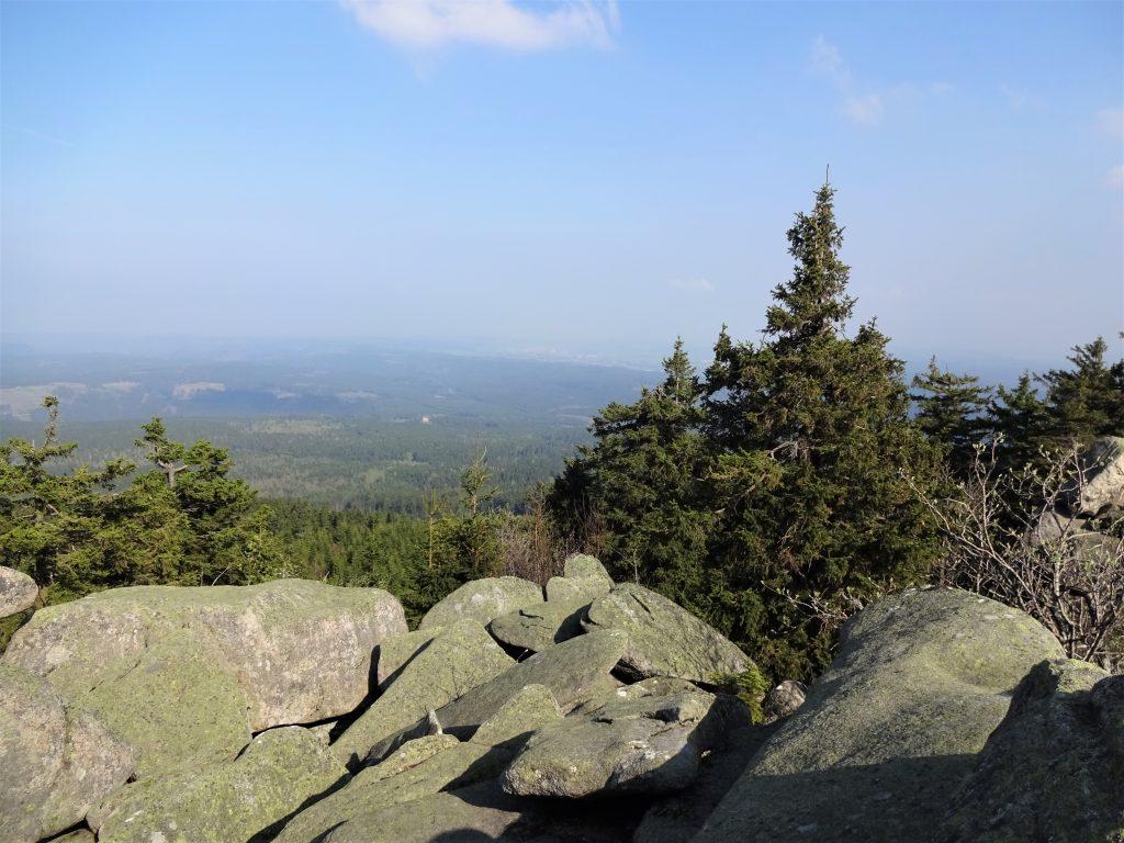 Uitzicht vanaf een rotsen op een hoog punt naar een dal met dennenbomen met een stralende blauwe lucht in het Harzgebergte.