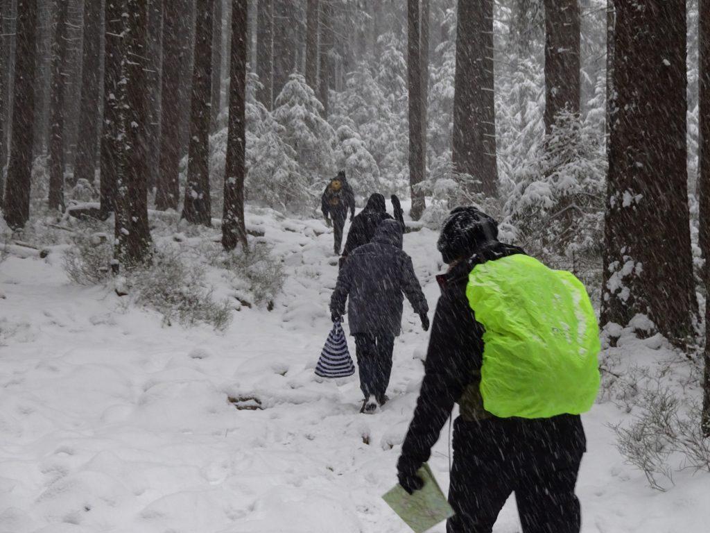 Een groep cursisten van Northern Pioneers lopen achter elkaar over een besneeuwd bospad tijdens een weekend navigatieschool in Duitsland.