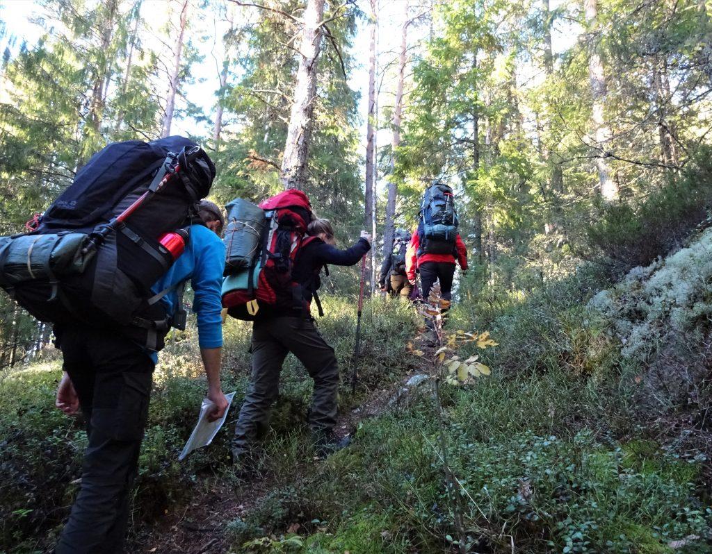 Cursisten trekken met grote rugzak op door de bossen in Zweden.