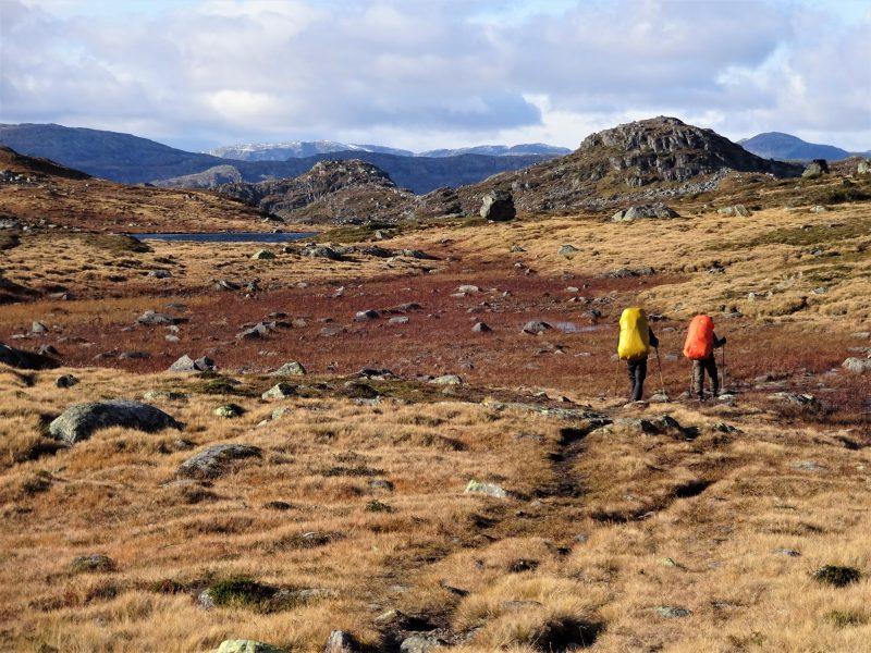 Cursisten hiking met rugzak en wandelstokken door de ruige wildernis van Noorwegen