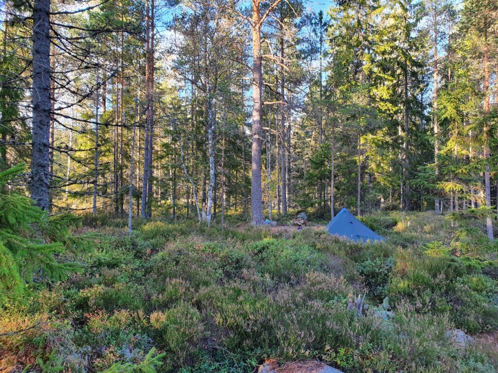 Tarp geplaatst in bos tijdens solotrekking in Zweden