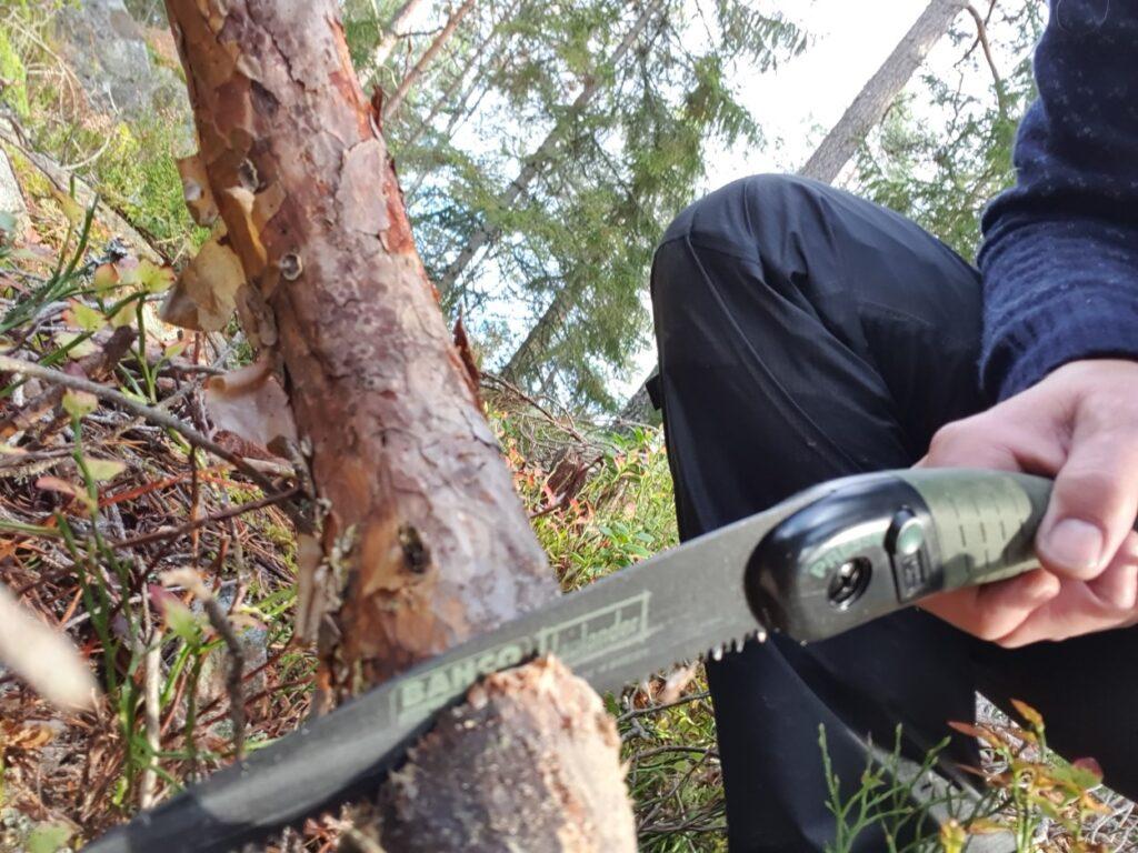 Tijdens solotrekking in Zweden is de deelnemer in een boomstam aan het zagen voor een kampvuur