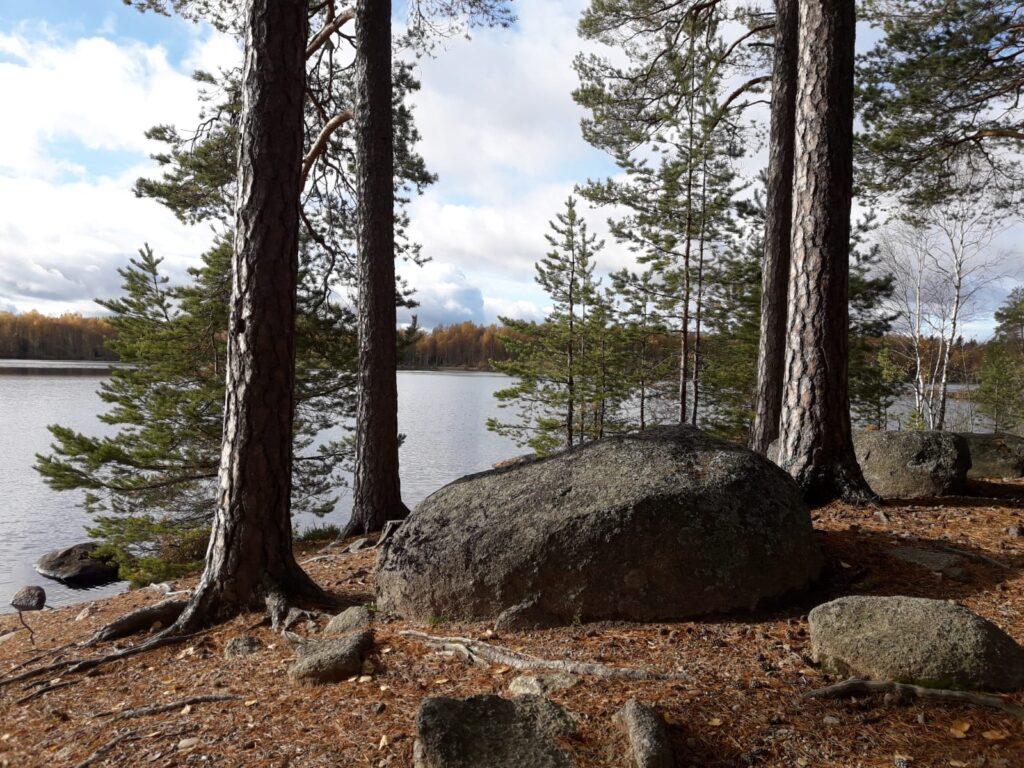 Uitzicht vanaf een onbewoond eiland in Zweden