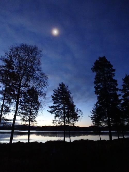 Zonsopkomst in Zweden tijdens wildkamperen